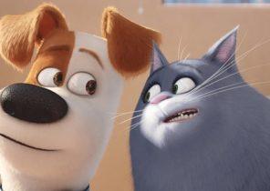 Картинка из мультфильма Тайная жизнь домашних животных 2